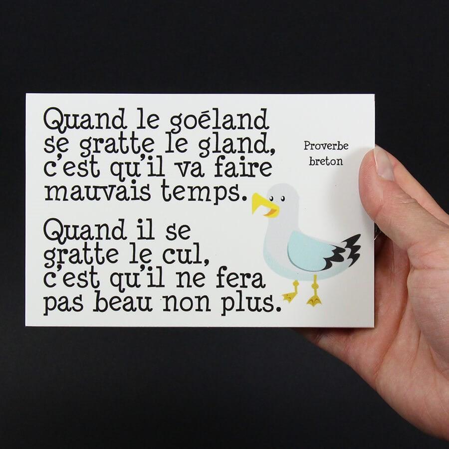 https://www.maisonludique.com/141245-large_default/panneau-humour-deco-quand-le-goeland.jpg