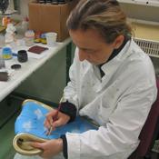 peinture à la main des objets